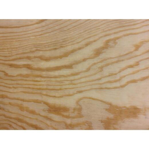 Universal Forest Products 1/2 In. x 24 In. x 24 In. BCX Pine Plywood Panel