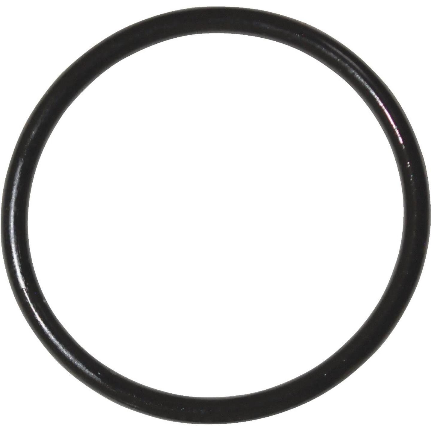 Danco #76 1-3/8 In. x 1-9/16 In. Buna-N O-Ring Image 1